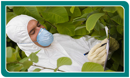 Man in face mask and protective clothing surrounded by green plants