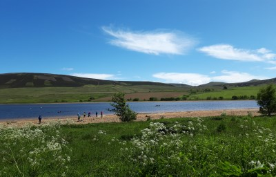 View of a loch with beach and green fields